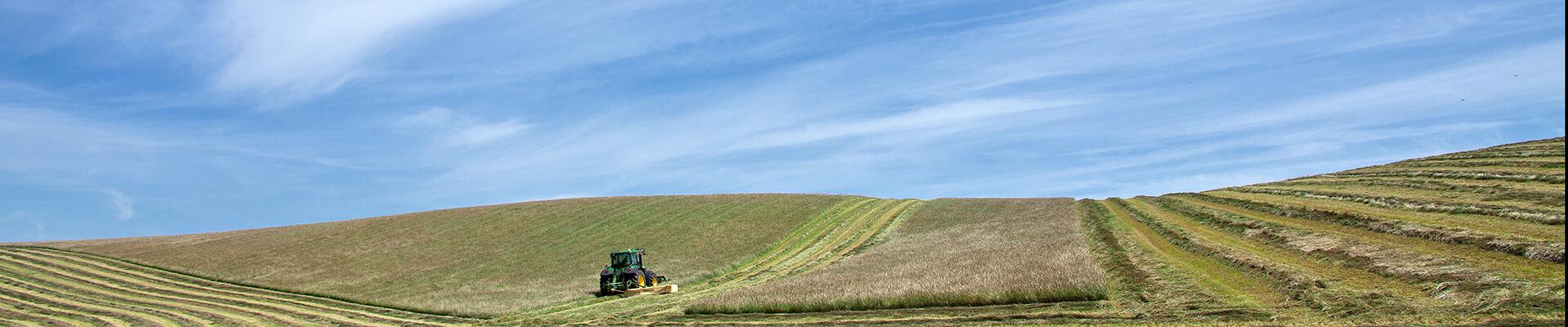 Feld mit Traktor