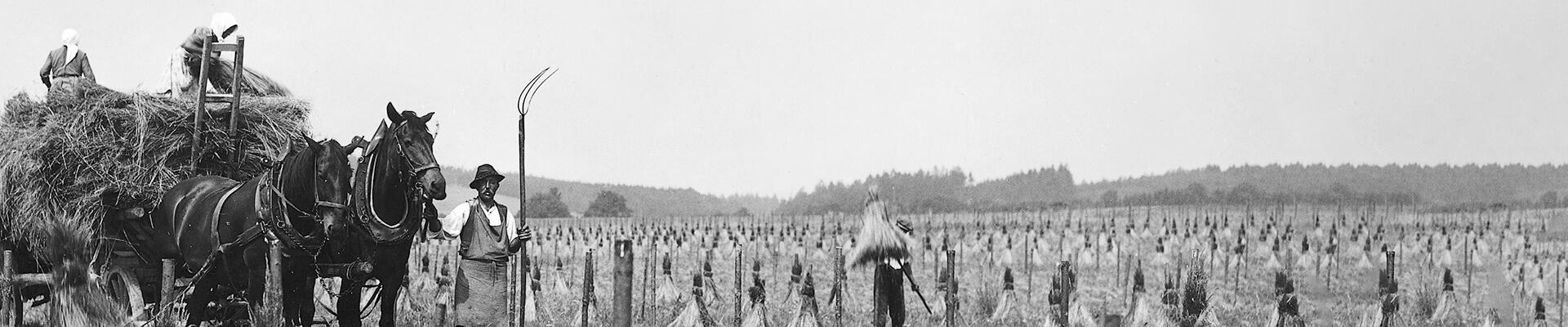 schwarz-weiß Aufnahme von Feldarbeitern